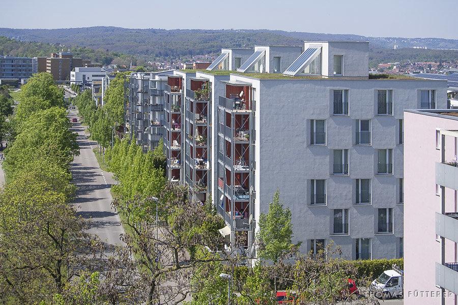 burgholzhof-4301376.jpg